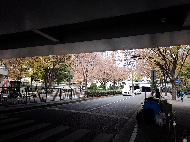 初冬の新宿
