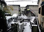 Snow20161124104243